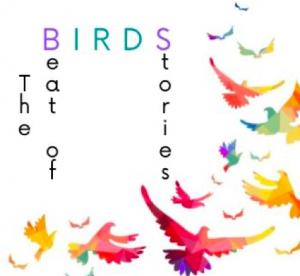 Logo progetto birds
